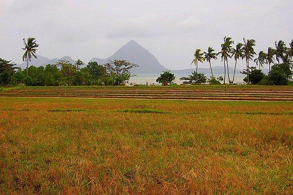 Panay island- Philippines