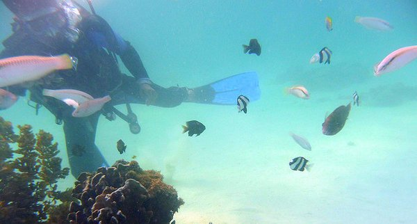 bad diving practices- Boracay Island- PHilippines