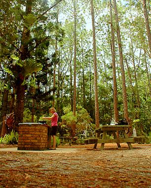 Fraser Island campsite