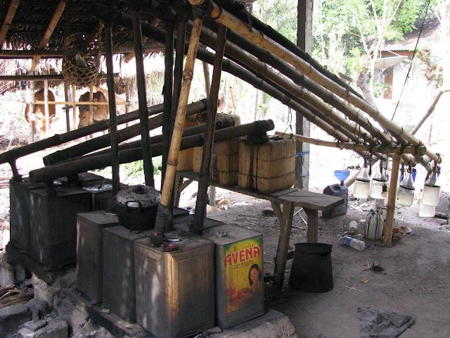 bali arak- distillery