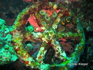 wheel- Liberty Shipwreck - Amed- Bali