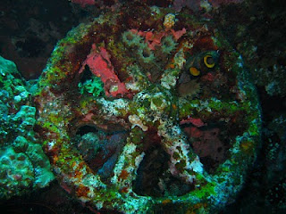 diving story- wheel- Liberty Shipwreck - Amed- Bali
