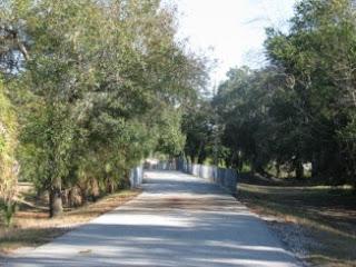 Pinellas Trail- St Petersburg