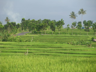 cycling Bali -Bali's southwest coast
