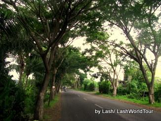 cycling bali- road- north Bali