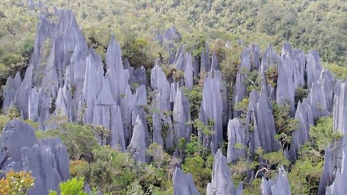 The Pinnacles, in Mulu, Sarawak