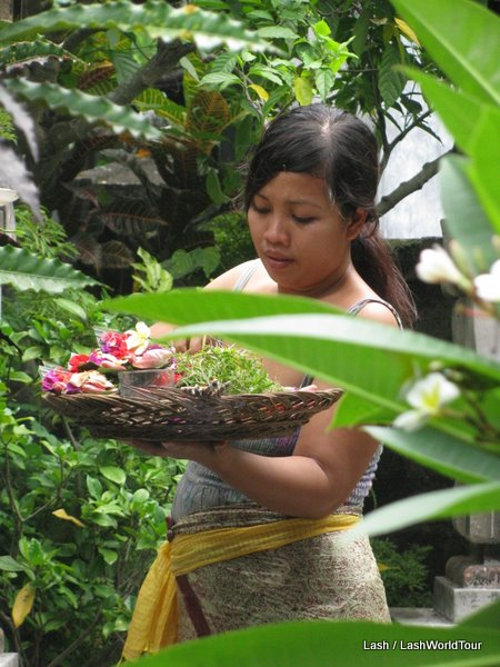 Balinese woman-offerings