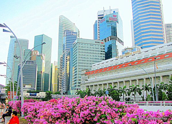 Singapore- financial district skyscrapers and Fullerton Hotel and bougainvillea