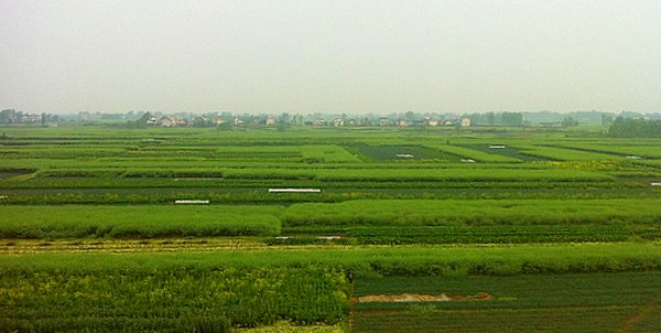 flat fields of Chinese countryside