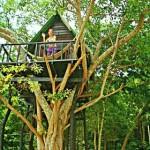 Lash- treehouse bungalow- Koh Samet- Thailand