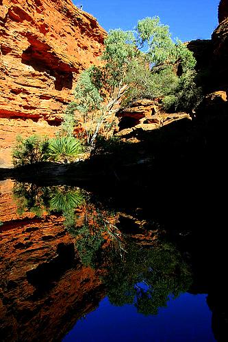 King's Canyon- Australia