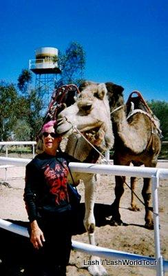 Alice Springs and Ayers Rock- Lash - Australia - camel ride