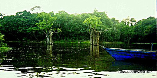 Amazon river cruise- boat on Rio Negro- Amazon