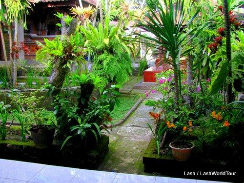 Dani homestay garden - Ubud - Bali