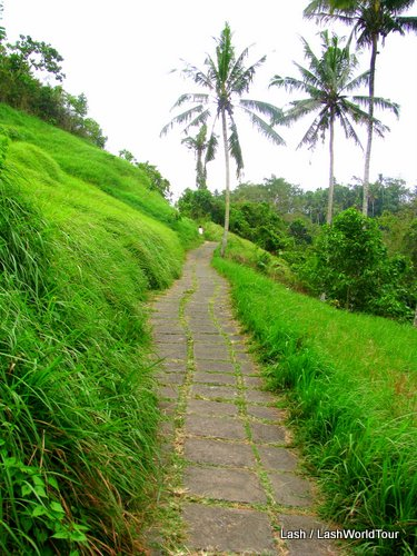 hiking trail- Buikit Campuan- ubud- Bali