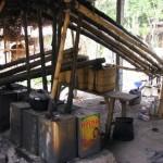 arak distillery - rural Bali