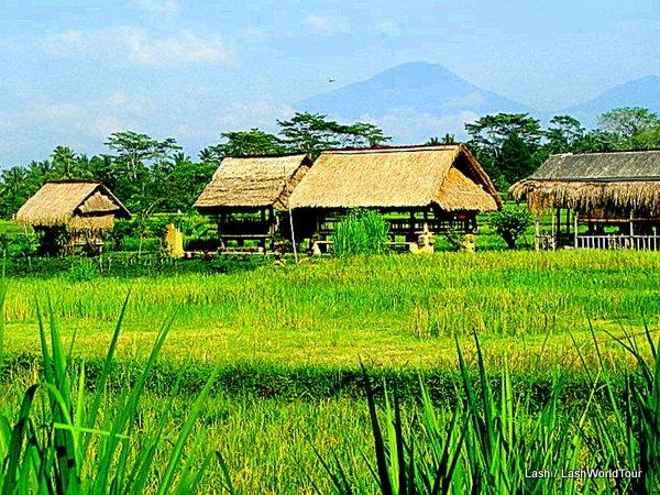 Volcano Bali Ubud Fields Near Ubud – Bali