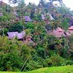 guest houses in Bali - Ubud houses in hills - Bali