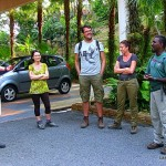 Dev's ADventure Tours - Evening Jungle Walk - Langkawi