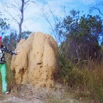 Lash with giant termite mound- Australia