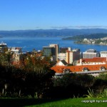 Wellington - view from Botanic Gardens