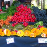 fresh veggies at Noosa Market