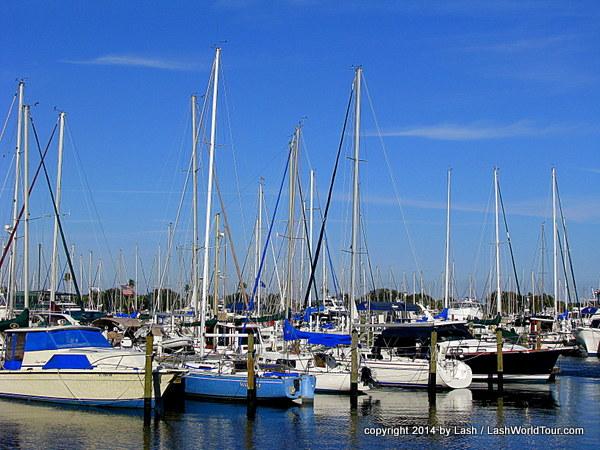 yachts at St Pete marina