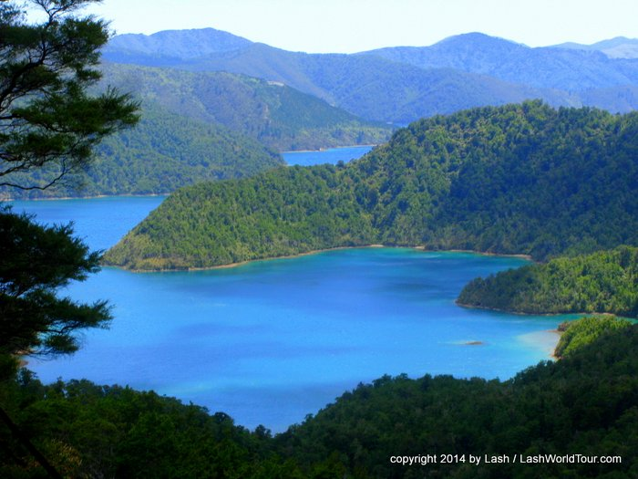 Marlborough Sounds New Zealand  City pictures : New Zealand Travel Stories From 132 Worldly Bloggers | Travelogx