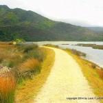Start of Abel Tasman Track at Marahau