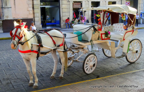 horse & cart in Merida - Mexico