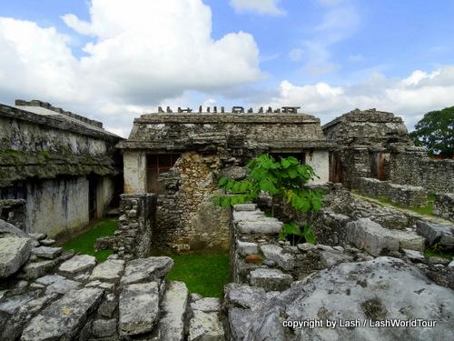 Palenque Mayan ruins - Mexico