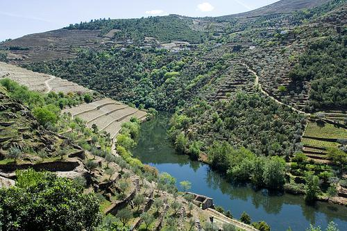 Douro River - Spain - photo by Marco Varisco under CC license