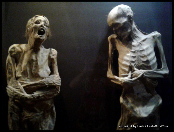 naturally preserved mummies on display at the Mummy Museum in Guanajuato