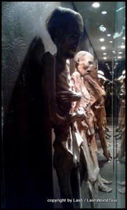 glass case of mummies
