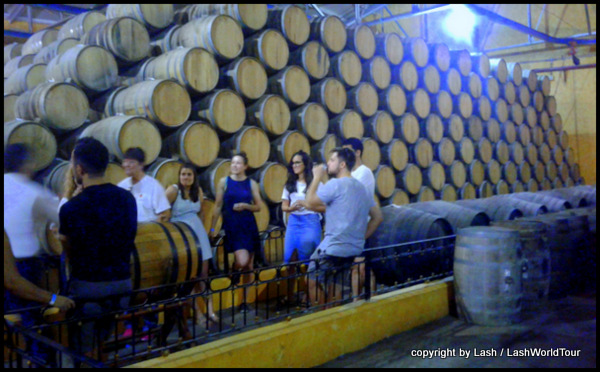 tour of Jose Cuervo Tequila distillery in Tequila