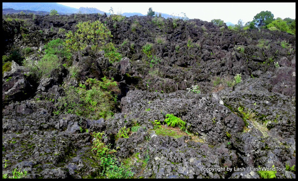 sharp black lava rock