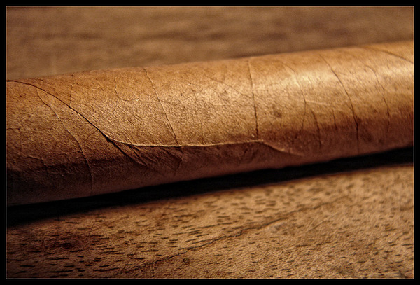 cigar photo by daniel.stark on Flickr CC